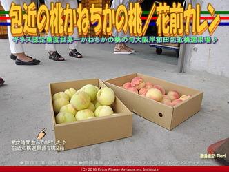 包近の桃/花前カレン画像03