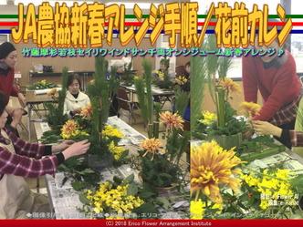 JA農協新春アレンジ手順(4)/花前カレン画像02 ▼画像クリックで640x480pxlsに拡大@エリ子花前カレン