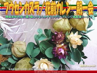フウセンカズラ花アレンジ/花前カレン画像02
