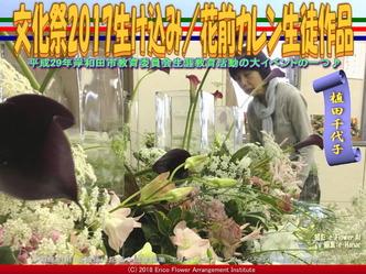 文化祭2017生け込み(4)/植田千代子画像01 ▼画像クリックで640x480pxlsに拡大@エリ子花前カレン