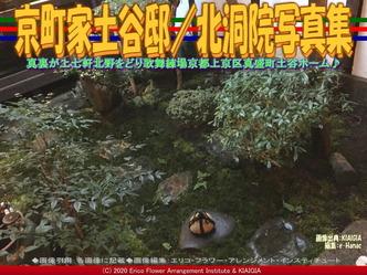 京町家土谷邸(9)/北洞院写真集画像01 ▼画像クリックで640x480pxlsに拡大@北洞院エリ子花前カレン