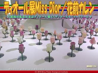 ディオール展Miss Dior(2)/花前カレン画像01