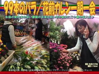 99本のバラ/花前カレン一期一会画像03