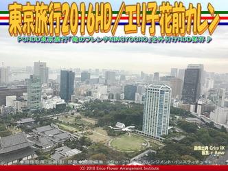 東京旅行2016HD(2)/エリ子花前カレン画像02 ▼画像クリックで640x480pxlsに拡大@エリ子花前カレン
