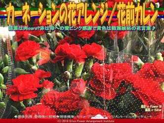 カーネーションの花アレンジ(6)/花前カレン画像01▼画像クリックで640x480pxlsに拡大@エリ子花前カレン
