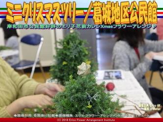 ミニXmasツリー手順(2)/岸和田フラワーアレンジ画像01 ▼画像クリックで640x480pxlsに拡大@エリ子花前カレン
