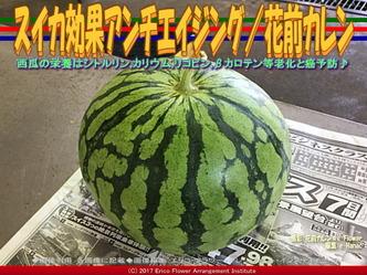 スイカ効果アンチエイジング(6)/花前カレン画像01