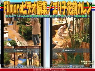 Filmoraビデオ編集(6)/エリ子花前カレン画像02 ▼画像クリックで640x480pxlsに拡大@エリ子花前カレン