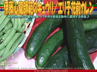 伊藤心龍師範のキュウリ/エリ子花前カレン画像02