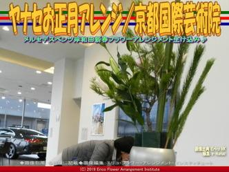 ヤナセお正月アレンジ(3)/京都国際芸術院画像01 ▼画像クリックで640x480pxlsに拡大@エリ子花前カレン