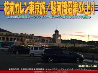 花前カレン東京旅(3)/駿河湾沼津SA上り画像02