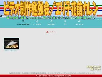 ビデオ制作勉強会(4)/エリ子花前カレン画像02 ▼画像クリックで640x480pxlsに拡大@エリ子花前カレン