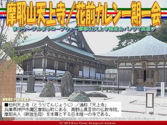 摩耶山天上寺/花前カレン一期一会画像03