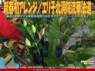 新春初アレンジ(4)/エリ子北洞院流華法道画像01 ▼画像クリックで640x480pxlsに拡大@エリ子花前カレン