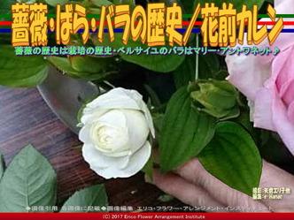ばら・バラ・薔薇の歴史(2)/花前カレン画像02