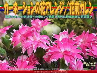 カーネーションの花アレンジ(3)/花前カレン画像02 ▼画像クリックで640x480pxlsに拡大@エリ子花前カレン
