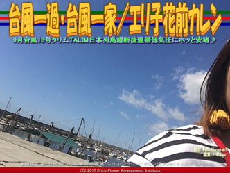 台風一過・台風一家(4)/エリ子花前カレン画像02