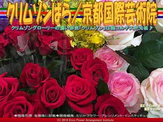 クリムゾンばら/京都国際芸術院画像01 ▼画像クリックで640x480pxlsに拡大@エリ子花前カレン