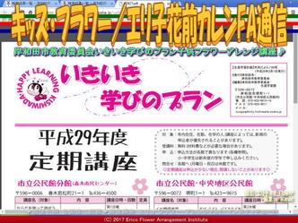キッズ・フラワー/エリ子花前カレンFA通信画像03