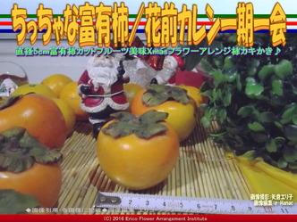 直径5cm富有柿/花前カレン一期一会画像01