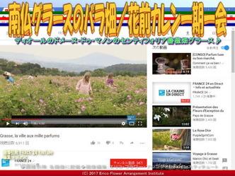 南仏グラースのバラ畑(3)/花前カレン画像02