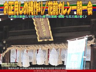 お正月しめ縄(2)/花前カレン一期一会画像01