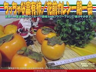カキ富有柿/花前カレン画像02