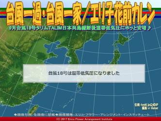 台風一過・台風一家(3)/エリ子花前カレン画像01