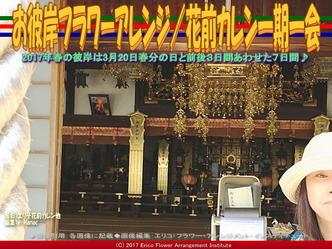 お彼岸フラワーアレンジ(7)/花前カレン画像01