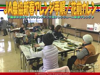 JA農協新春アレンジ手順(2)/花前カレン画像01 ▼画像クリックで640x480pxlsに拡大@エリ子花前カレン
