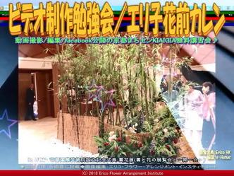 ビデオ制作勉強会(7)/エリ子花前カレン画像02 ▼画像クリックで640x480pxlsに拡大@エリ子花前カレン