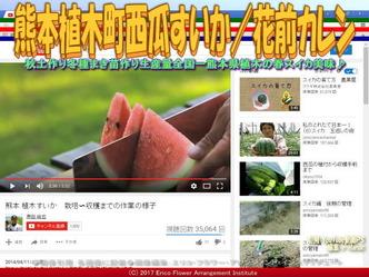 熊本植木町西瓜すいか(8)/花前カレン画像02