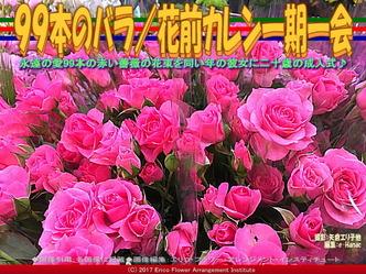 99本のバラ(3)/花前カレン一期一会画像01