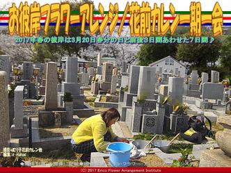 お彼岸フラワーアレンジ(9)/花前カレン画像01