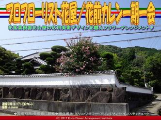 プロフローリスト花屋(2)/花前カレン画像02