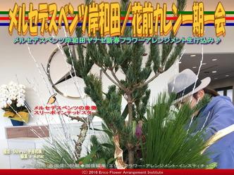 ヤナセメルセデスベンツ岸和田/花前カレン画像02