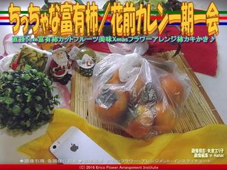 ちっちゃな富有柿/花前カレン一期一会画像01
