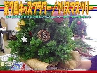 第7回キッズフラワー(3)/Christmas Tree画像01 ▼画像クリックで640x480pxlsに拡大@エリ子花前カレン