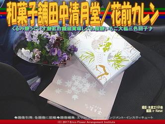 和菓子舗田中清月堂(2)/花前カレン画像03