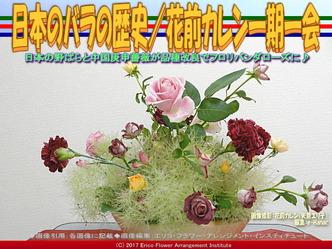 日本のバラの歴史(2)/花前カレン画像02