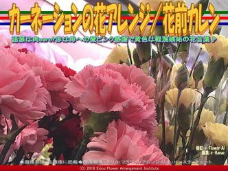カーネーションの花アレンジ(3)/花前カレン画像01 ▼画像クリックで640x480pxlsに拡大@エリ子花前カレン