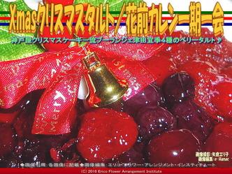 Xmasクリスマスタルト/花前カレン一期一会画像01