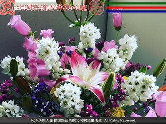 交換ブログ(5)花は花屋/京都国際芸術院画像02 ▼画像クリックで640x480pxlsに拡大@エリ子花前カレン