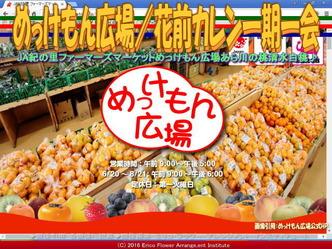 めっけもん広場(2)/花前カレン一期一会画像02