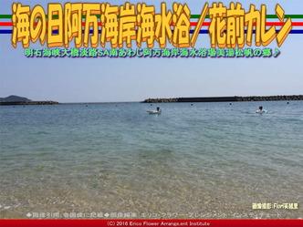 南淡路阿万海岸海水浴/花前カレン画像03