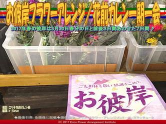 お彼岸フラワーアレンジ(7)/花前カレン画像03