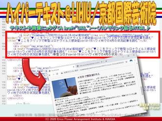 ハイパーテキスト@LIHIU(5)/京都国際芸術院画像01 ▼画像クリックで640x480pxlsに拡大@北洞院エリ子花前カレン