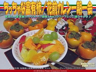 カキ富有柿/花前カレン画像03