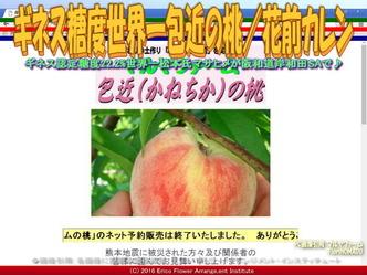 ギネス糖度世界一包近の桃/花前カレン画像01
