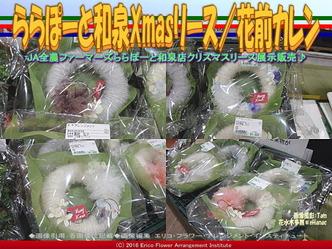 ららぽーと和泉Xmasリース(2)/花前カレン画像03